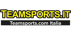 Teamsports